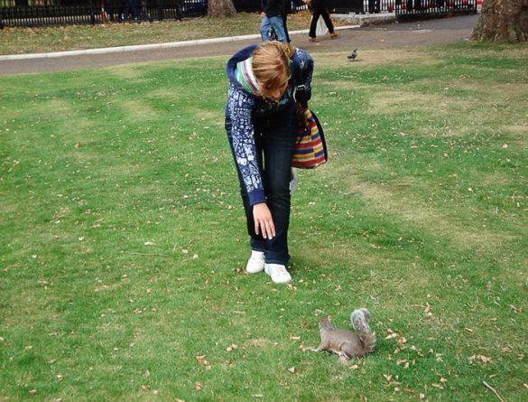 ženska lovi veverico, Greenwich Park