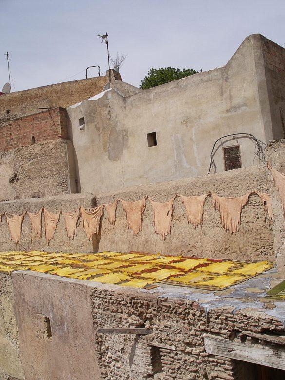 usnjarska obrt Maroko: živalske kože se sušijo na soncu
