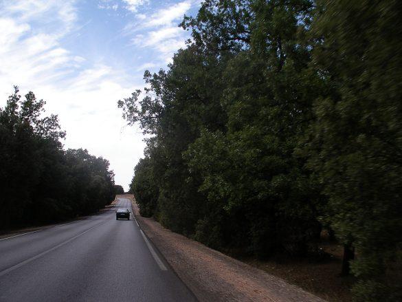 Maroko cesta čez Srednji Atlas