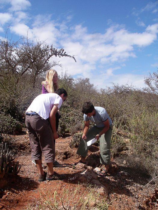pustolovci nabirajo divje sadeže kaktusa