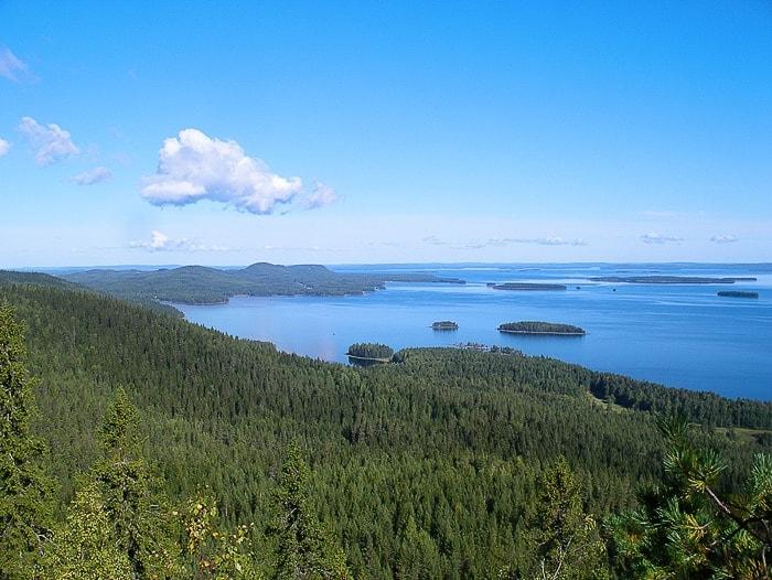 park Koli na Finskem: smrekovi gozdovi in jezero v daljavi