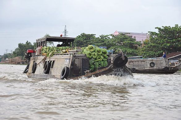 ladja z bananami, delta reke Mekong, Vietnam