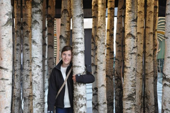 ženska med debli brezovih dreves
