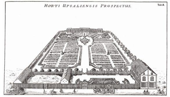 Linnaeusov vrt