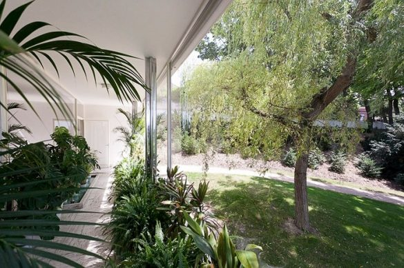 odprta panoramska stena ter zelenje povsod. Zunaj na vrtu in lončnice v stavbi