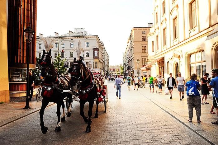 kočija z dvema konjema se pelje po tlakovani ulici v starem delu mesta Krakov