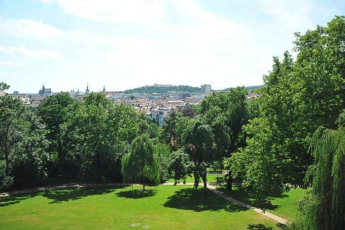travnik, obdan z drevesi, v ozadju mesto Brno