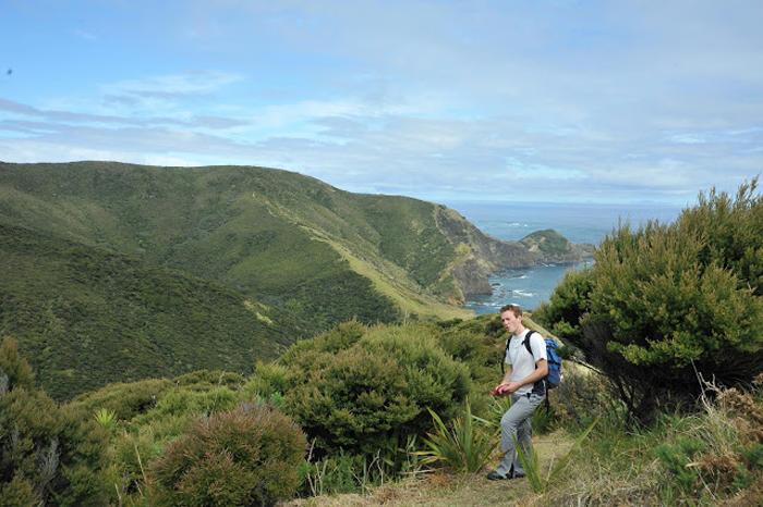 Treking Nova Zelandija: do Cape Reinga