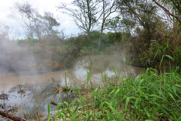 žvepleni vrelci Rotorua