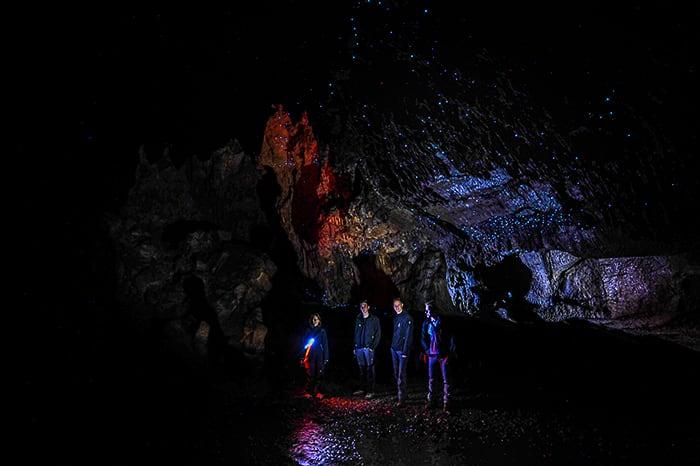 Jama Waipu in svetleči črvi (glowworms) na Novi Zelandiji