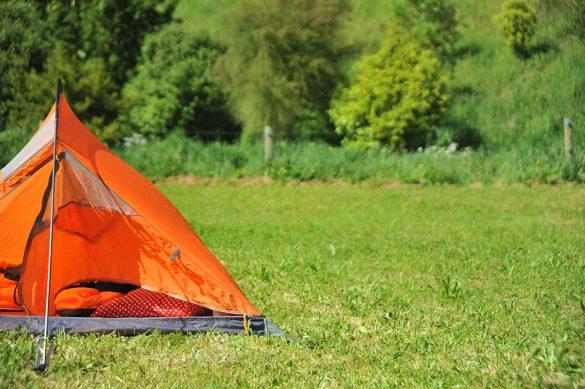 šotor na zelenici, Nova Zelandija