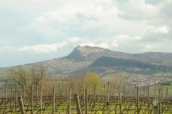 vinogradi in vzpetina na obzorju