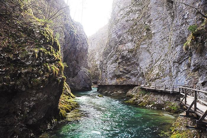 reka Radovna teče skozi Blejski vintgar