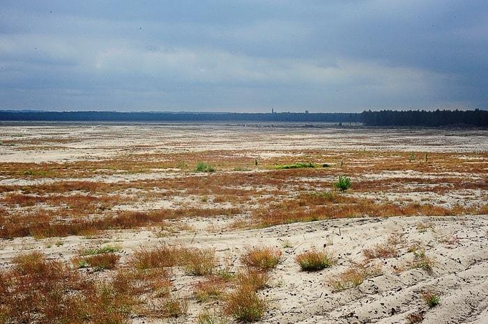 peščena puščava z občasnimi suhimi travami in temnim nebom zgoraj