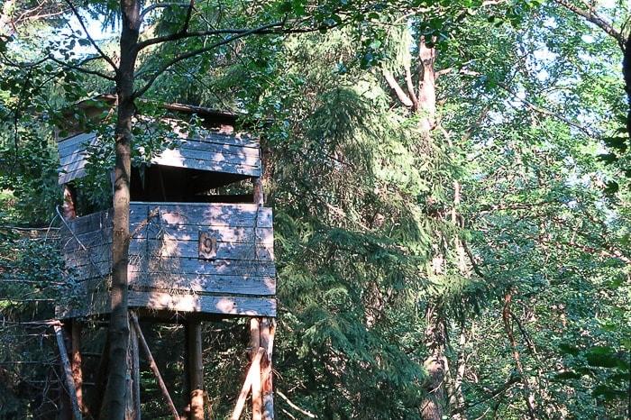 lovska opazovalnica v gozdu
