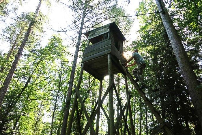 moški se vzpenja po lestvi na lovsko opazovalnico v gozdu