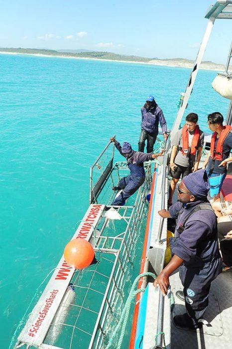 Kletka za potapljanje z morskimi psi