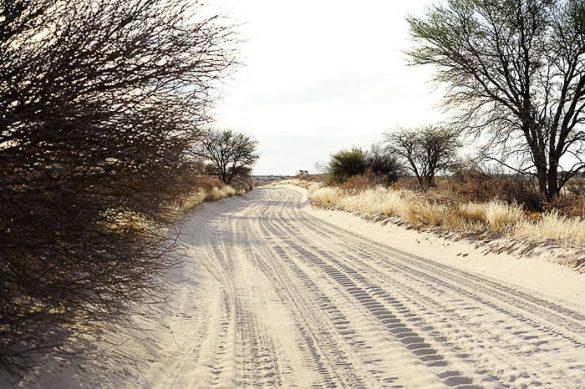 cesta v parku Kgalagadi