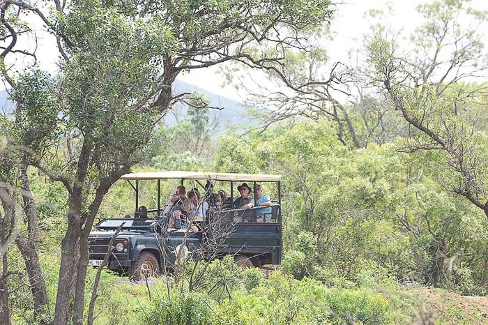 safari jeep, Hluluwe-iMfolozi, Južna Afrika