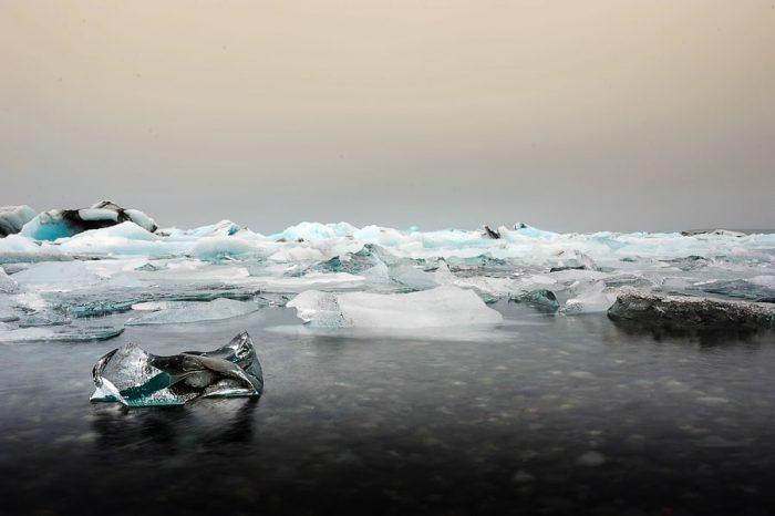 kos ledu na vodi, laguna Jokulsarlon, Islandija
