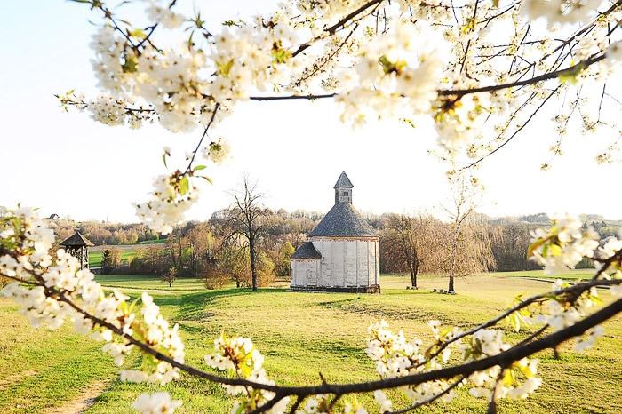 pogled skozi cvetoče drevje na okroglo leseno cerkev