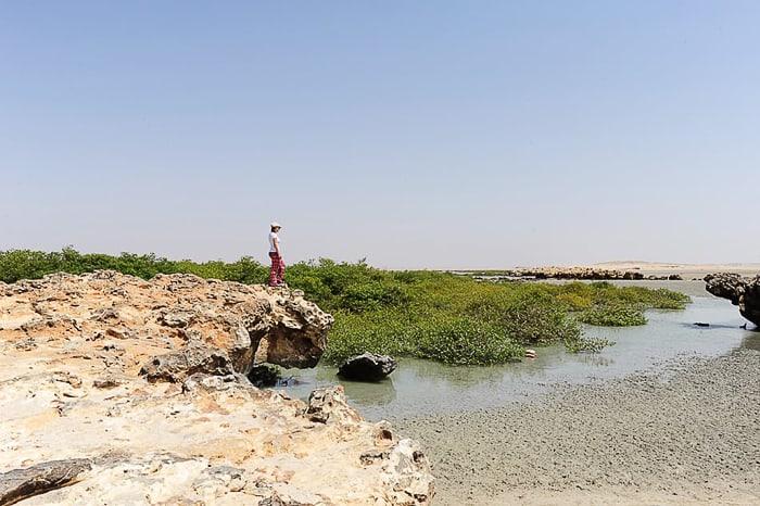 ženska stoji na skali nad morjem