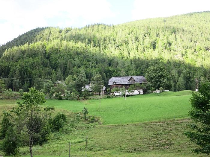 tradicionalna kmečka hiša na jasi sredi gozda