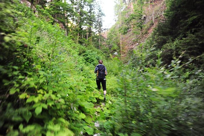ženska hodi po gozdu skozi sotesko Kaštel