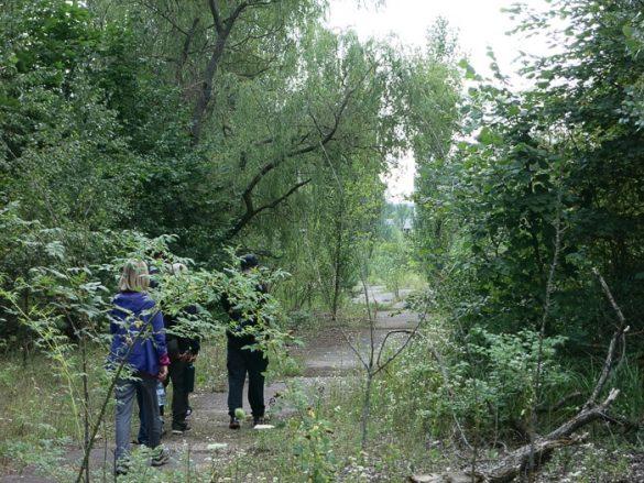 skupina ljudi hodi po gozdni potki. pripjat, ukrajina