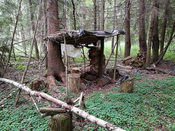 lesena koliba v gozdu