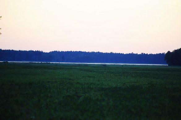 večer na jasi sredi gozda Naliboki