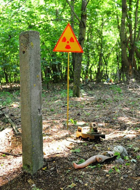 znak za radioaktivno sevanje v gozdu, Černobil Ukrajina