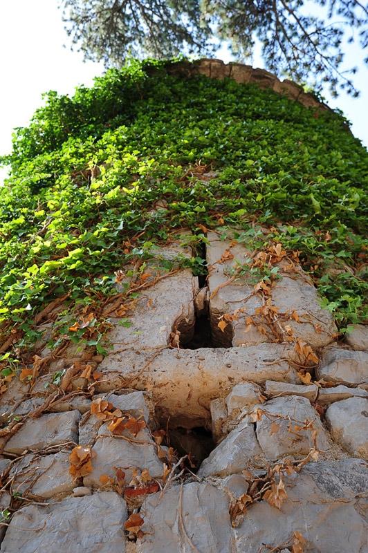 kamnit stolp preraščen z zelenjem