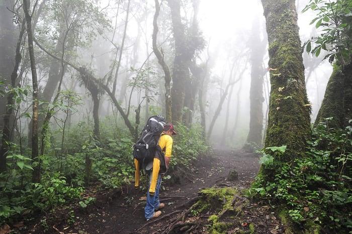 vzpon na vulkan Acatenango