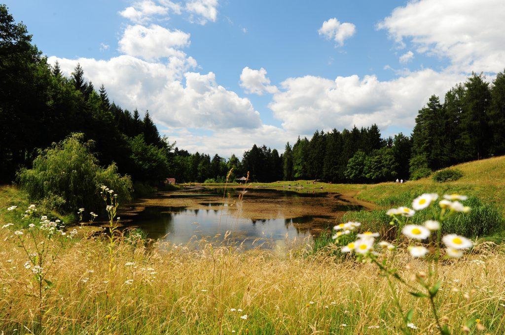 ivarčko jezero na slovenskem koroškem