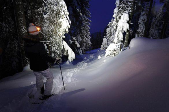 ženska s svetilko na glavi stoji sredi zasneženega gozdu