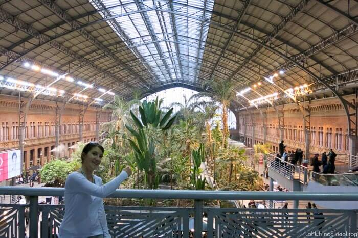 Atocha, železniška postaja v Madridu s tropskim gozdom