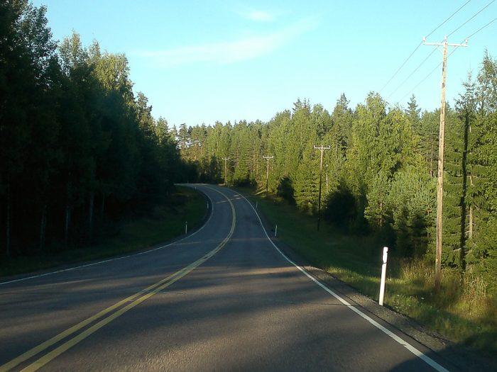 cesta skozi gozd na Finskem