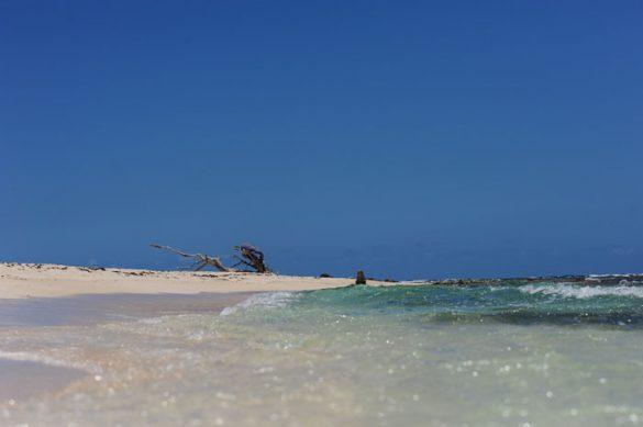 morje in sipina