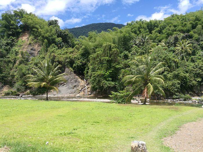 travnik, drevesa in slapovi v ozadju v reki Rio Grande