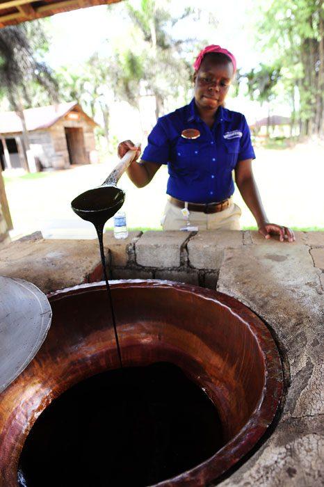 vodička v Appleton Rum Estate kaže sladkorni sirup, melaso