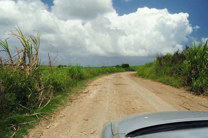 makadamska cesta na Jamajki