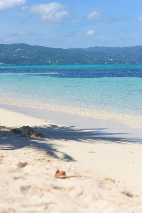 Palmina senca na pesku najlepše plaže na Jamajki: Dead End Beach
