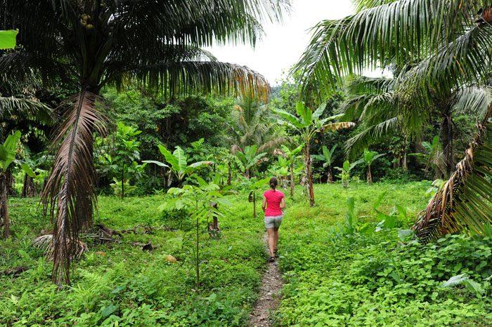 Katarina v gostem tropskem rastju, med bananovci in drugimi drevesi v dolini reke Rio Grande