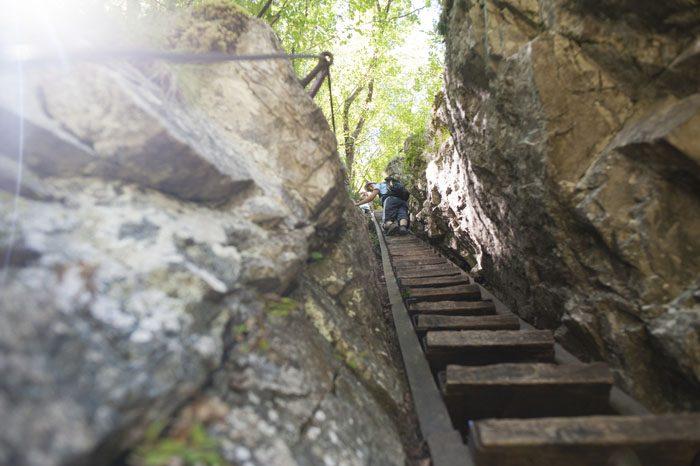 stopnice med skalami v Pekel pri Borovnici