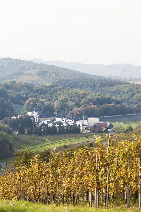 pogled na samostan pleterje iz griča z vinogradi