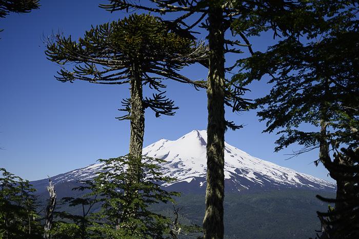 nacionalni park Coguillo