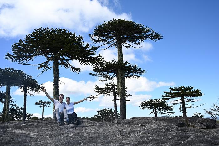 Par v parku Nahuelbuta, Čile