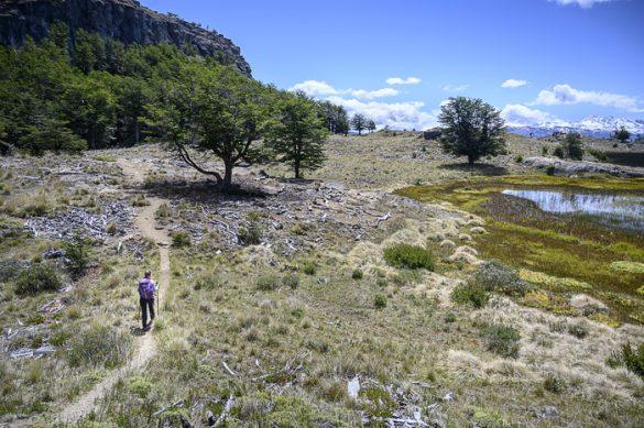 ženska hodi po parku Patagonia