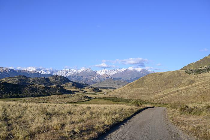 cesta, ki se vije proti goram